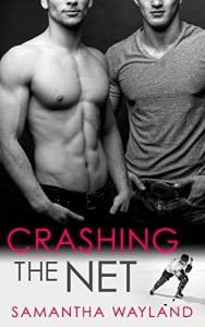 Crashing The Net, Samantha Wayland, V.L. Locey, Reads & Recs