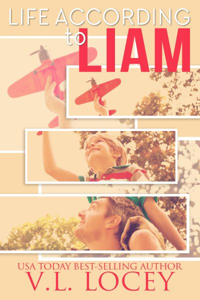 Life According To Liam, MM Romance, V.L. Locey
