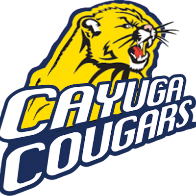 Cayuga Cougars Series Now Available in Kindle Unlimited!