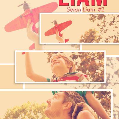 La Vie selon Liam – Nouvelle version